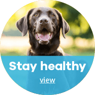 Stay Healthy at Waglands