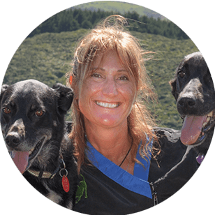 Our Team - Sue - Dog Care Specialist