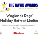 The David Award - Most Outstanding Triumph over Adversity Finalist 2017