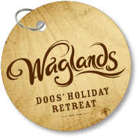 Waglands dog tag logo